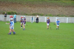 2009 Under 9 Denis Brennan and Kilmacud Tournament